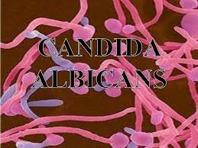 Immuno Candida