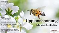 Honung 1 kg ekologisk