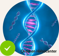 D3 Aids_DNA_Repair_and_Other_Metabolic_Processes