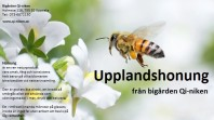 Honung 225 g ekologisk