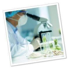 Prolon är en kliniskt testad, vetenskaplig metod.