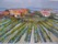 27 vingård, akvarell