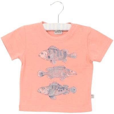 Wheat T-shirt Fish - Wheat T-shirt Fish ( Storlek 4 år )