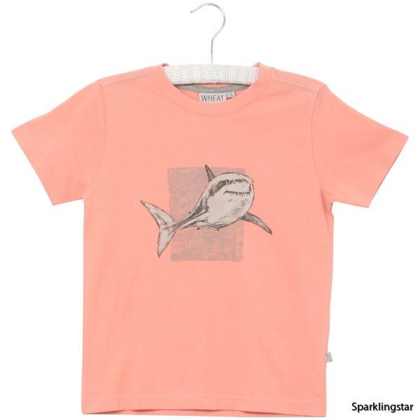 Wheat T-shirt Shark