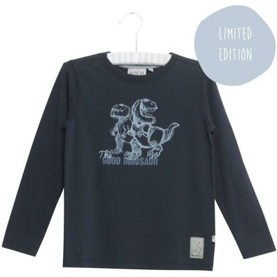Wheat T-shirt Good Dinosaur - Wheat T-shirt Good Dinosaur ( Storlek 2 år )