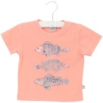 Wheat T-shirt Fish