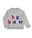 Livly Big Brother Sweatshirt - Livly Big Brother Sweatshirt ( Storlek 4 år )