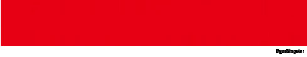 Sonny Angel Logo