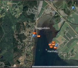 Dagguden/Hanhals