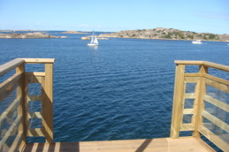 Utsikten från hopptornet.