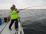 Havsfiske & skaldjurssafari