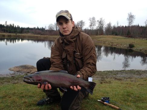 Regnbåge på 2,5 kg tagen av Jarkko