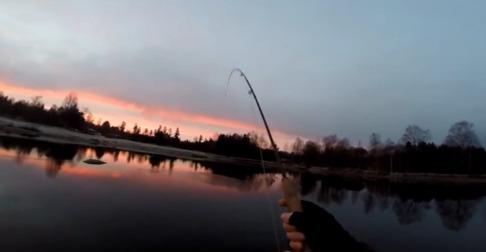 Fiske på Ekemölla 2015.11.21
