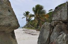 Paradisön Jamesby i Tobago Keys