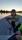 Gös från Vikasjön