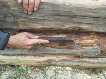 När vi ska märka ut långdraget använder vi ett gammalt dragjärn, också det hittat i ladugården. När man drar det mellan stockarna, så blir det en ristad markering som man följer när man sen ska ta bort på den övre stocken.