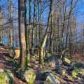 Bo och vandra i Halland naturreservat