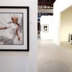 THE PHOTOGALLERY DOUGLAS KIRKLAND