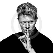Gavin Evans-Bowie