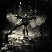 Icarus alex timmermans