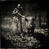 The Truffle Seeker,alex timmermans