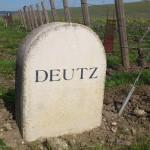 Champagne Deutz vineyard