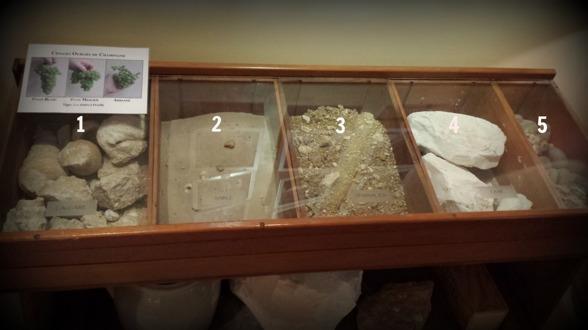 Olika markförhållanden druvorna växer i ...1.Fossil kalksten,2.Sand, 3.Lera/limestone,4.Krita,5.Sten