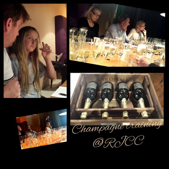 OBS! Vår Nellie doftar enbart på Champagne och letar doftämnen, och hon är klockren! Plockar lätt ut gröna resp blå druvor- Chardonnay kontra Pinot. Hon får aldrig någonsin smaka alkohol.