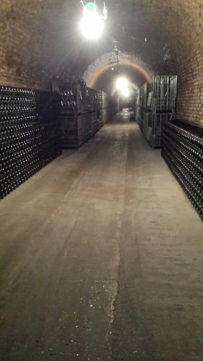 Deutz Champagnekällare har sammanlagt 160meter långa gångar, och lagras i 12grader. En jämn temperatur är ett måste för Champagne.