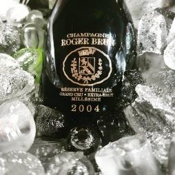 roger brun 2004