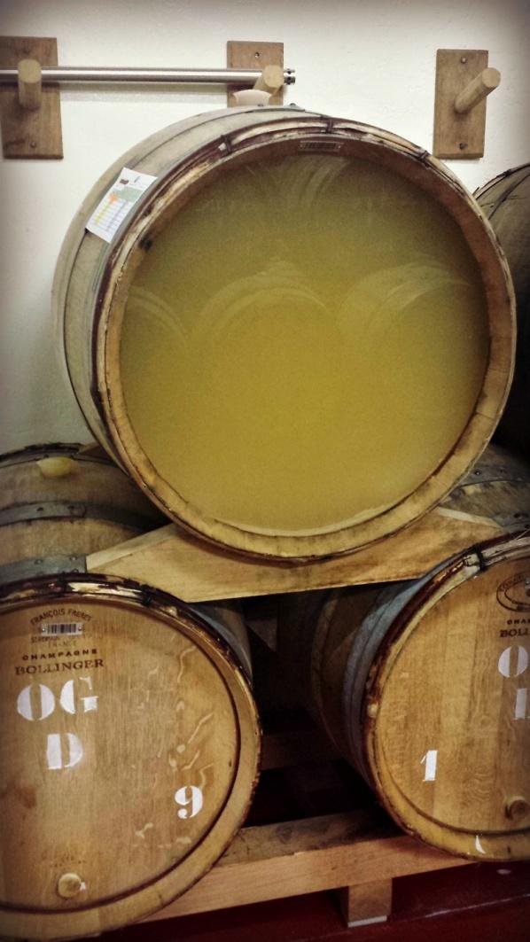 Champagne under vinifiering