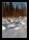 Soluppgång utanför Ostvik 160228-ex-2664-pass