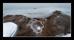 Byske havsbad 170122 (7)-pass