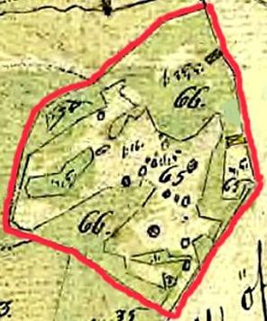 Kartan visar en detaljerad inritning av torpet Qvarntorps husbyggnad samt övrig mark noggrant beskriven - se C. 25 Kvarntorp - platsen för väderkvarn just ovan siffran 65!