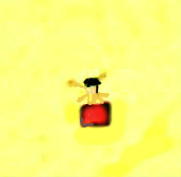 """Kartritarens akvarell förstorad och ifärgad av Kent Friman, 2013. Till och med """"rumpestången"""" tycks vara utritad på originalkartan!"""