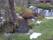 Kråkebäcken samlas delvis till en damm på tomten