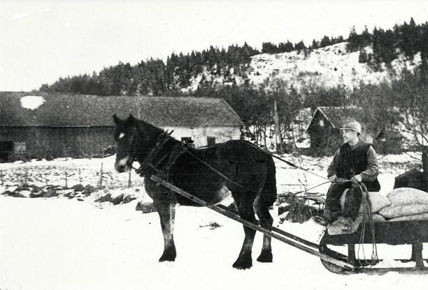 Nils Ljungström, dräng på Redsvenstorp på väg till Hålltorps kvarn 1925. Insatt av Kent Friman, 2014-02-26. Bild från Skarke-Varnhems Hembygdsförenings arkiv.