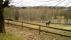 Den näraliggande hästhagen mot Hemmanet Stens gamla marker - med den forna grusgången i förgrunden