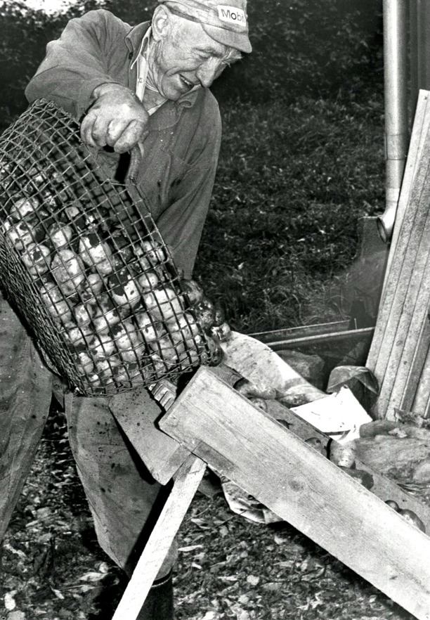 Foto Bo Ramviken. Bild från Gudrun Ramvikens samlingar, Sörgården, Varnhem, 2014.