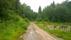 Gamla landsvägen västerut från huset