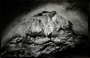 John Bauguess Copyright 1978 - med publiceringsrätt från fotograf. Klicka på bilden för att se den större!