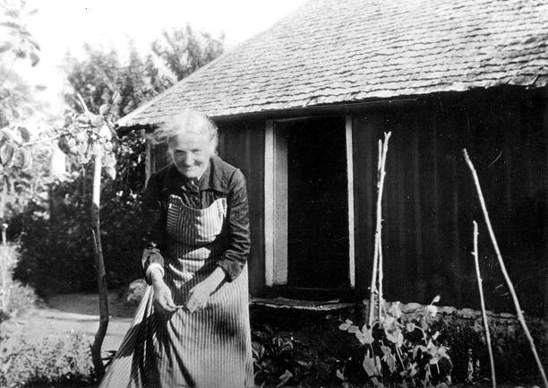 Foto ur Gunborg Ferms samling, Ljungstorp 2014. Fotot är från början ett kolorerat foto, redigerat av Kent Friman, 2014.