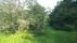 Huset från trädgården i söder