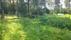 I trädgården söderut