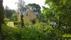 Carlsberg från södra trädgården