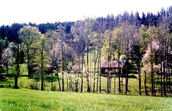 Bild från Skarke-Varnhems Hembygdsförenings hembygdsalbum.