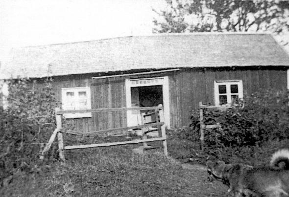 Foto ur David Stigs album. i Varnhemsbygden 2002.