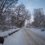 Ljungstorspvägen i vinterskrud