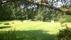 Trädgården västerut