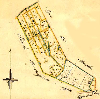 Karta från 1867 över Dunagårdens mark vid Backa.